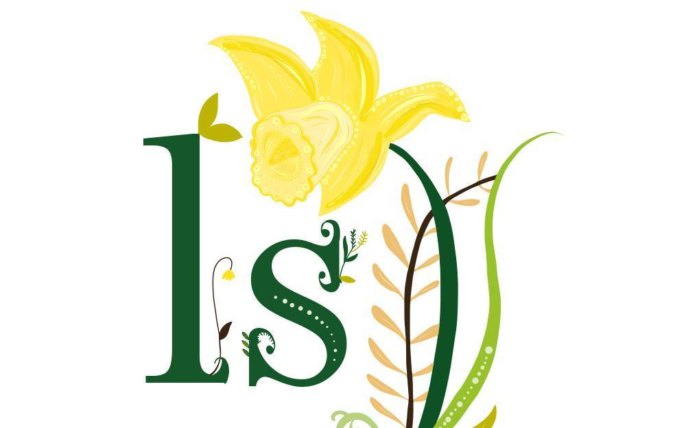 Market Harborough Logo Design Daffodils